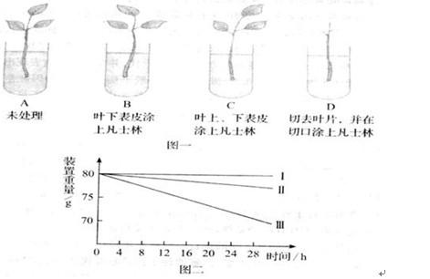 肖亚红老师:突破科学实验题,步骤简单轻松学