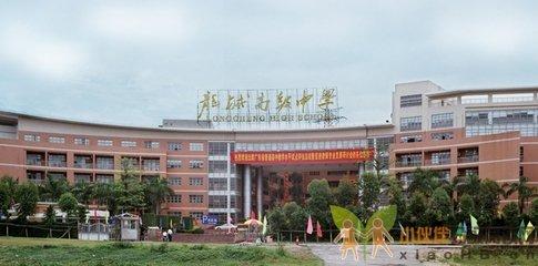 深圳市龙城高级中学届高考成绩数据图片